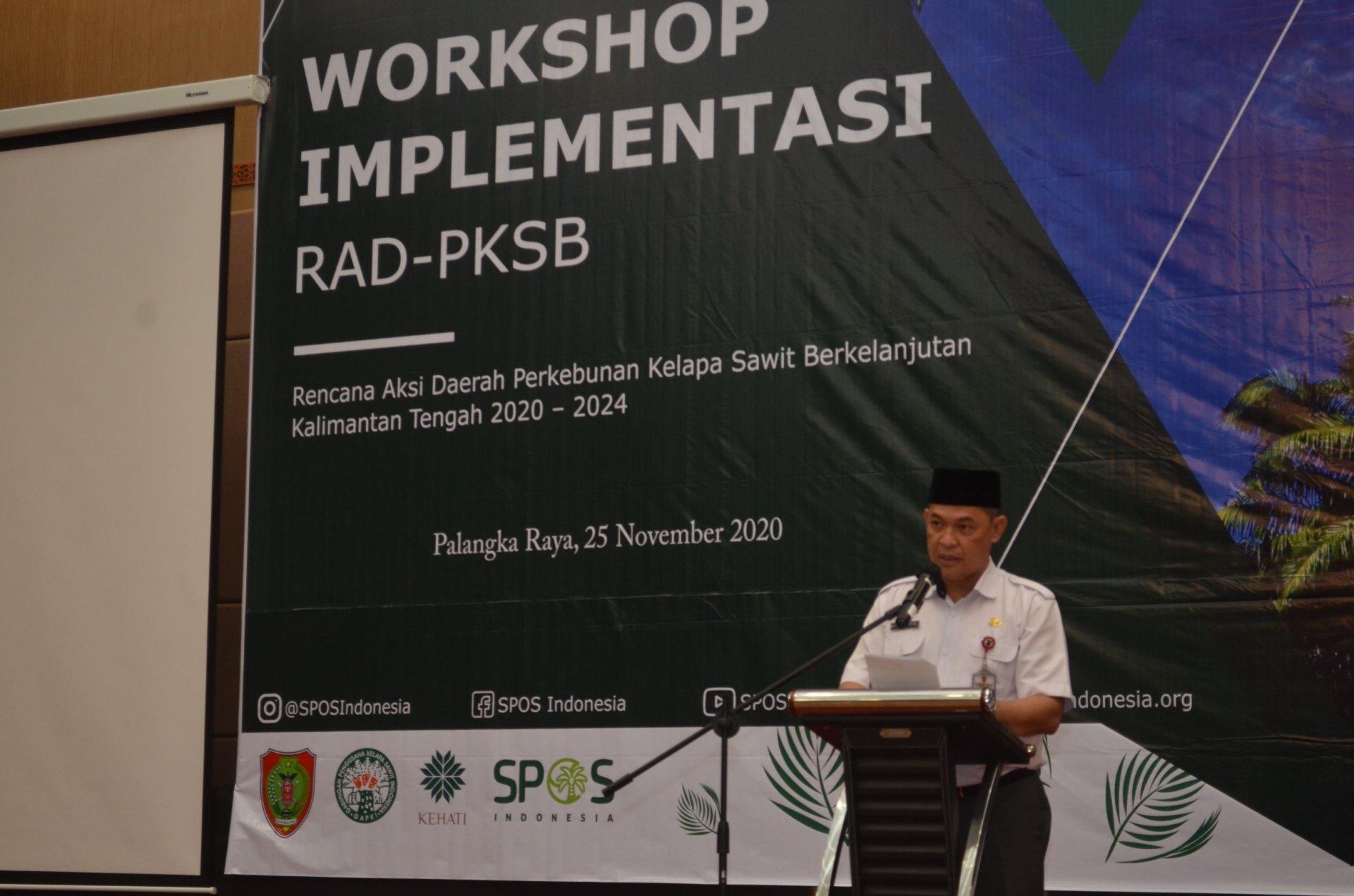 Pemprov Kalteng Dukung Implementasi Rencana Aksi Soal Perkebunan Kelapa Sawit Berkelanjutan